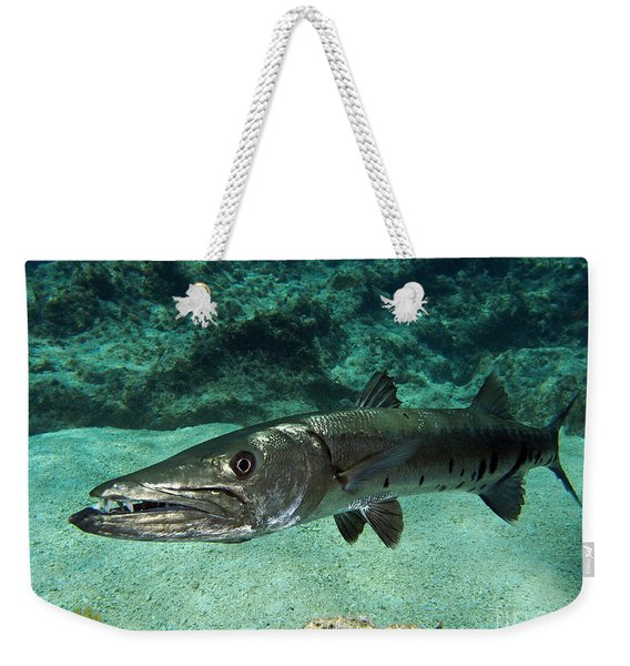 Barracuda Weekender Tote Bag