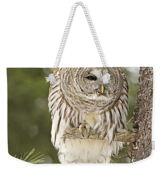 Barred Owl Hunting Weekender Tote Bag