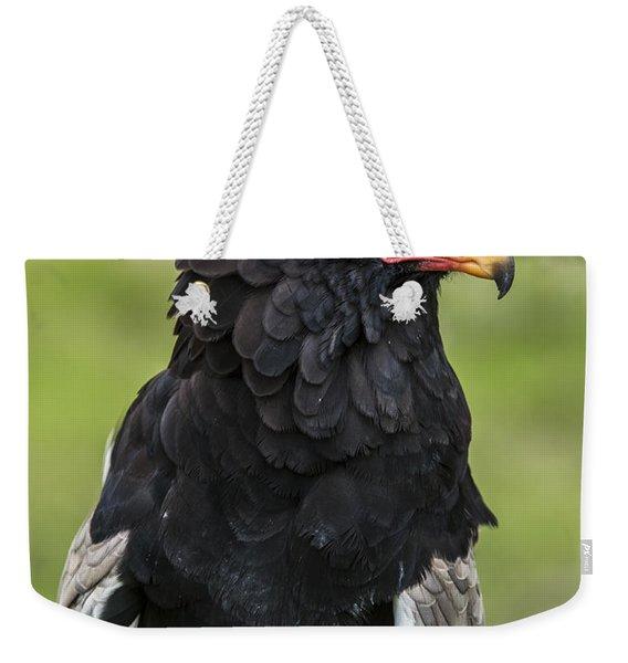 Bateleur 3 Weekender Tote Bag