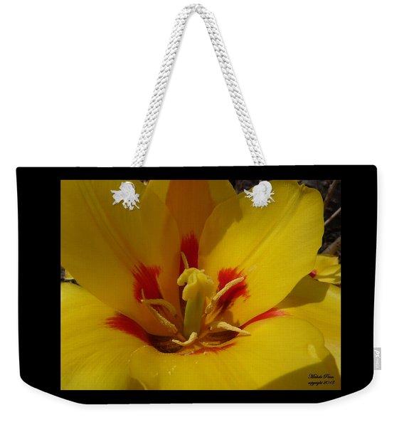 Be Drawn In - Signed Weekender Tote Bag