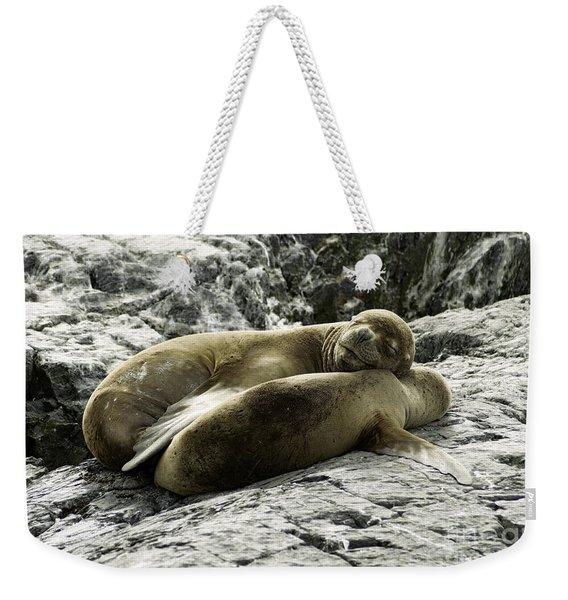 Beagle Channel Weekender Tote Bag