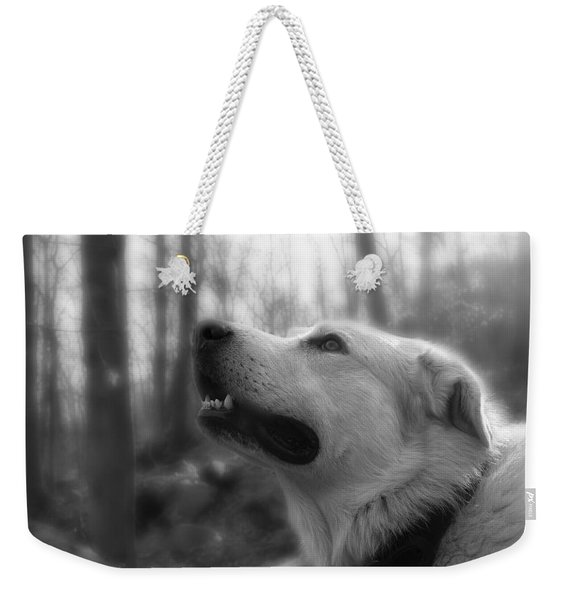 Bear Tooth Not Camera Shy Weekender Tote Bag