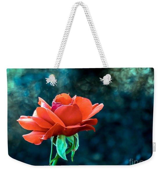 Beautiful Red Rose Weekender Tote Bag