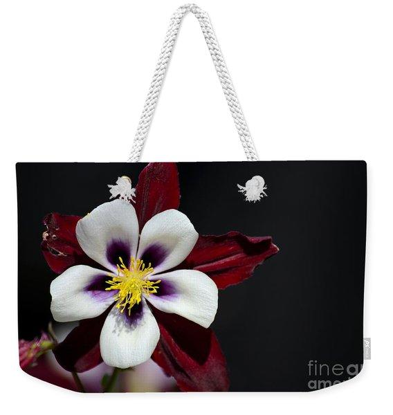 Beautiful White Petal Yellow Stamen Purple Shades Aquilegia Columbine Flower Weekender Tote Bag