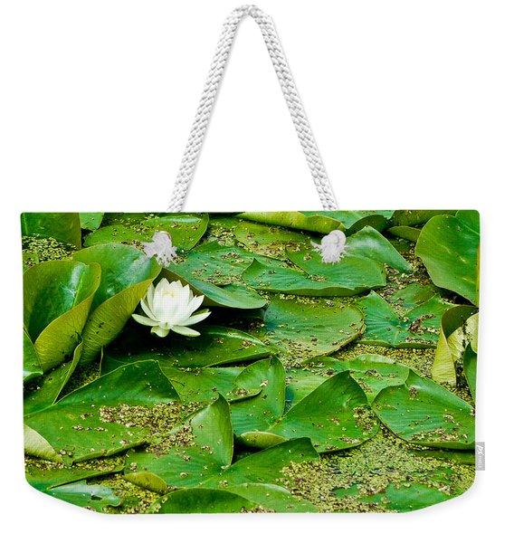 Beauty Beneath Weekender Tote Bag