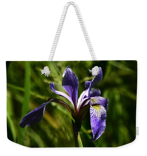 Beauty In The Grass Weekender Tote Bag