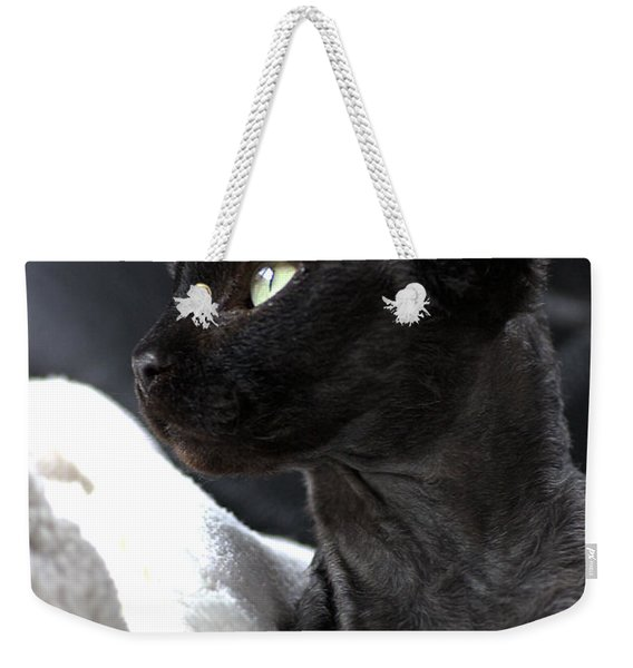 Beauty Of The Rex Cat Weekender Tote Bag
