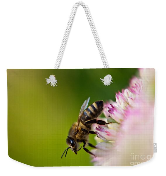 Weekender Tote Bag featuring the photograph Bee Sitting On A Flower by John Wadleigh
