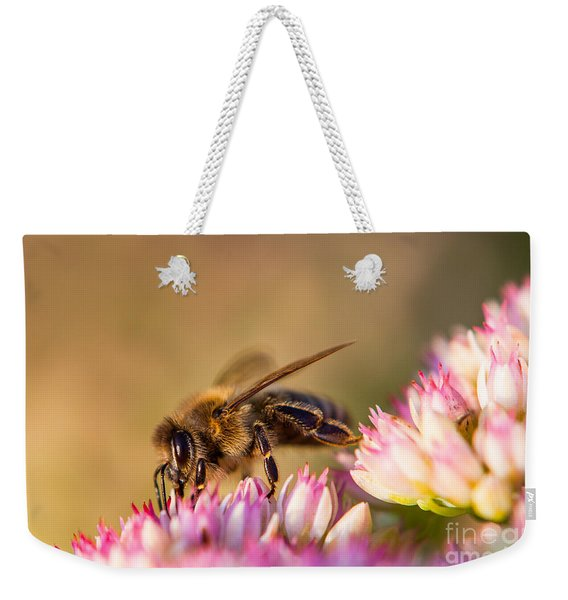 Weekender Tote Bag featuring the photograph Bee Sitting On Flower by John Wadleigh