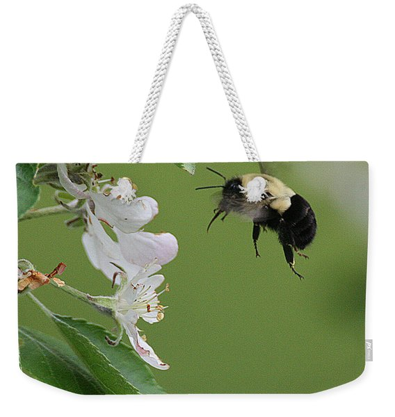 Bee With Apple Blossoms Weekender Tote Bag
