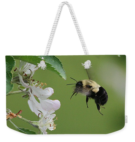 Weekender Tote Bag featuring the photograph Bee With Apple Blossoms by William Selander