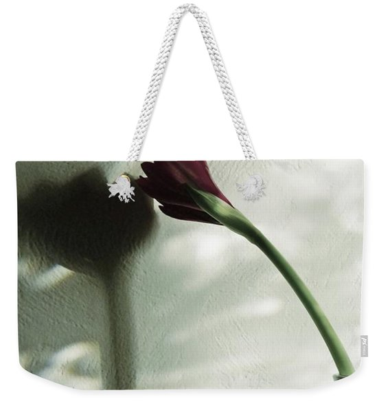 Weekender Tote Bag featuring the photograph Belle Ombre by Patricia Strand