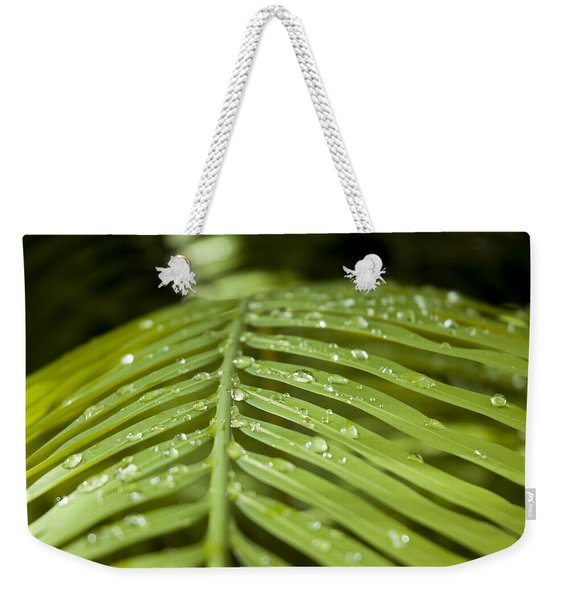 Weekender Tote Bag featuring the photograph Bending Ferns by Carolyn Marshall