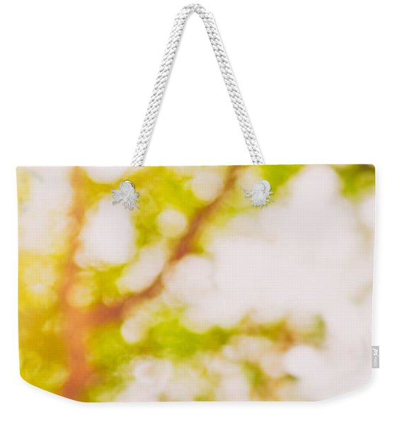 Beneath A Tree  14 5194  Diptych  Set 2 Of 2 Weekender Tote Bag