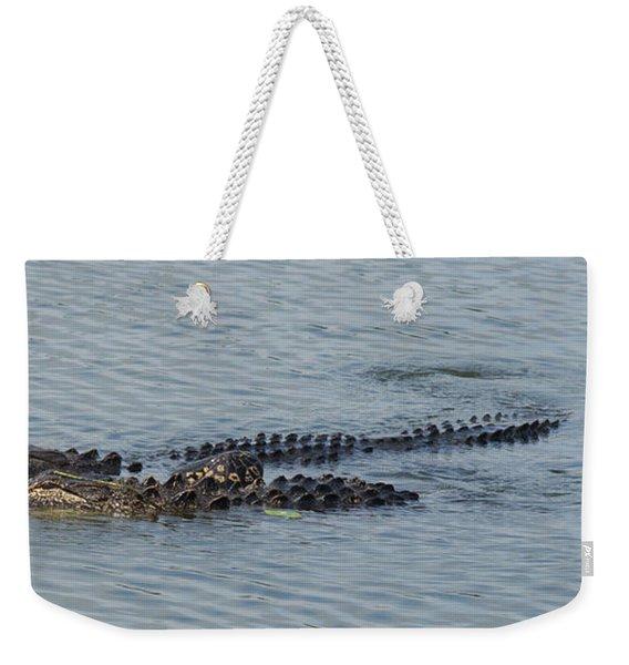 Bffs II Weekender Tote Bag