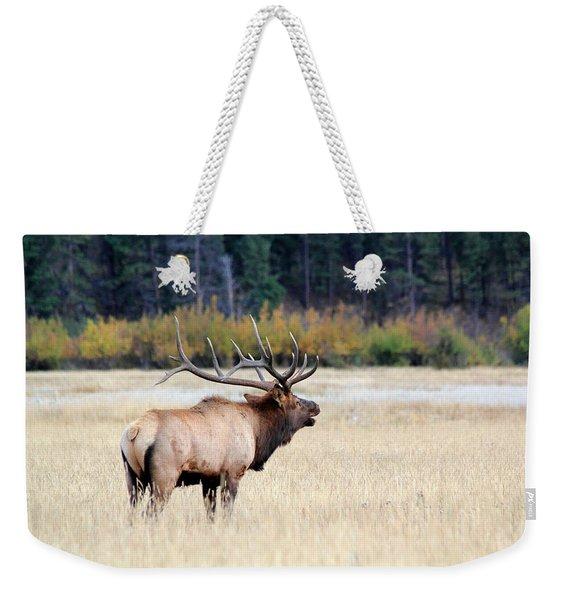 Big Colorado Bull Weekender Tote Bag