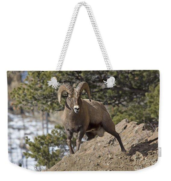 Big Horn Ram Weekender Tote Bag
