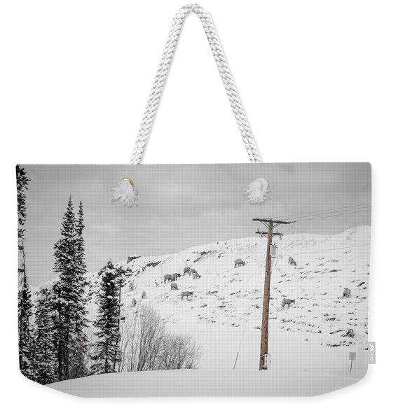 Big Horn Sheep Hinton Hillside Weekender Tote Bag
