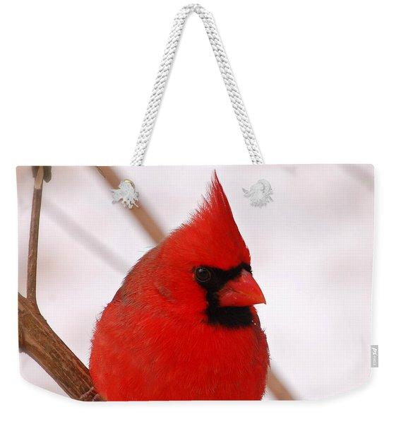Big Red  Cardinal Bird In Snow Weekender Tote Bag