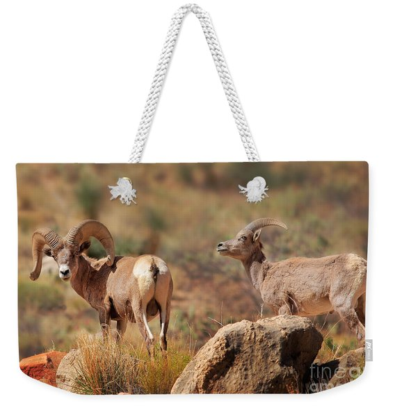 Bighorn Duo Weekender Tote Bag