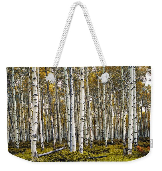 Aspen Trees In Autumn Weekender Tote Bag