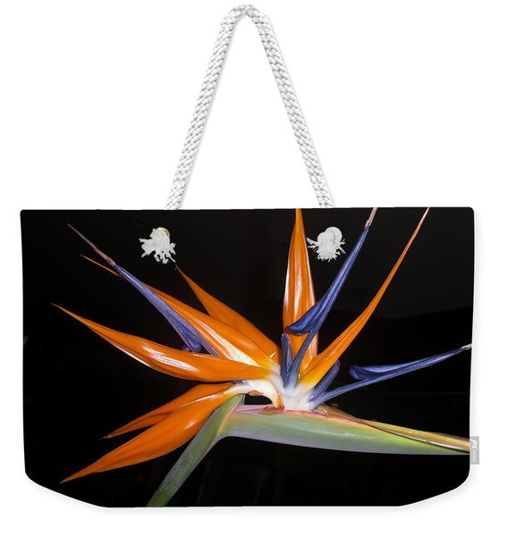Bird Of Paradise Beauty 4 Weekender Tote Bag