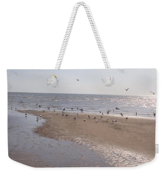 Birds At The Beach At Low Tide Weekender Tote Bag