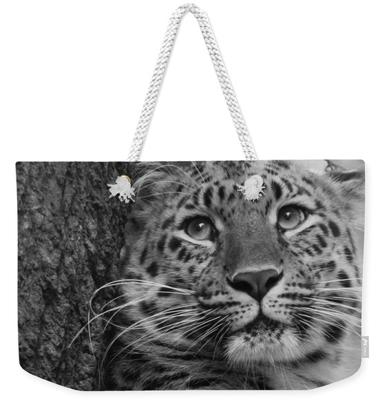 Black And White Amur Leopard Weekender Tote Bag