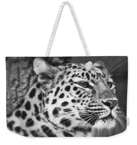 Black And White - Amur Leopard Portrait Weekender Tote Bag
