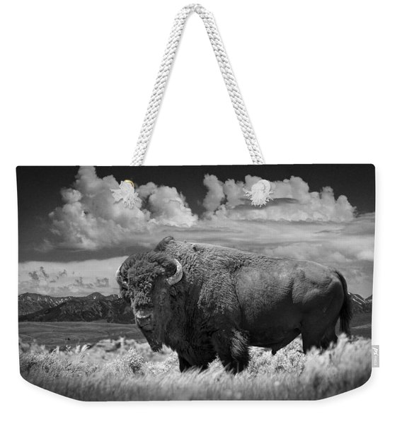 Black And White Photograph Of An American Buffalo Weekender Tote Bag