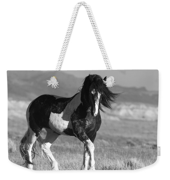 Black And White Stallion Walks Weekender Tote Bag