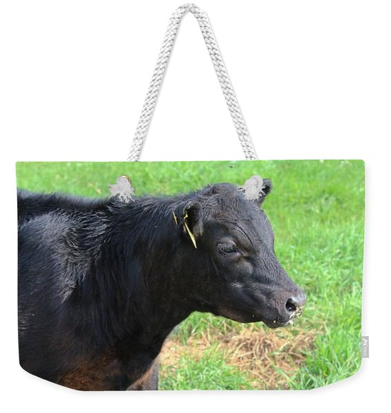 Black Angus Calf Weekender Tote Bag