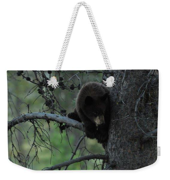 Black Bear Cub In Tree Weekender Tote Bag