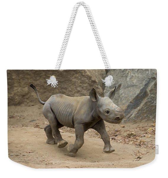 Black Rhinoceros Calf Running Weekender Tote Bag