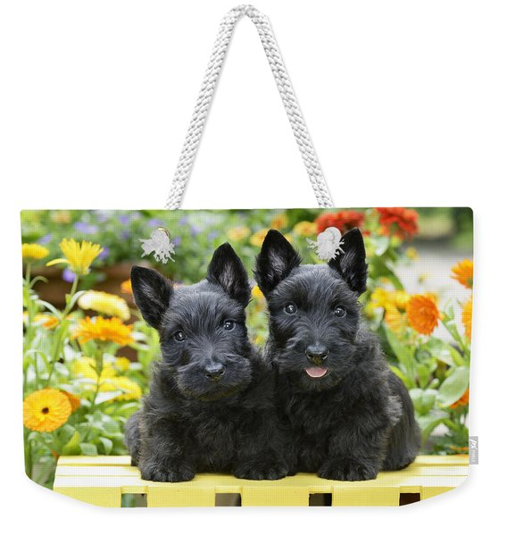 Black Scotties Weekender Tote Bag