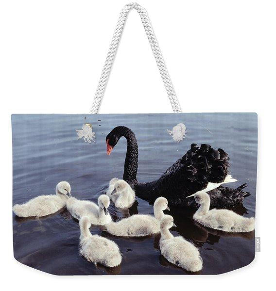 Black Swan And Cygnets Weekender Tote Bag