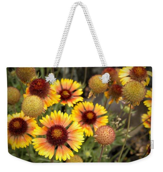 Blanket Flowers  Weekender Tote Bag