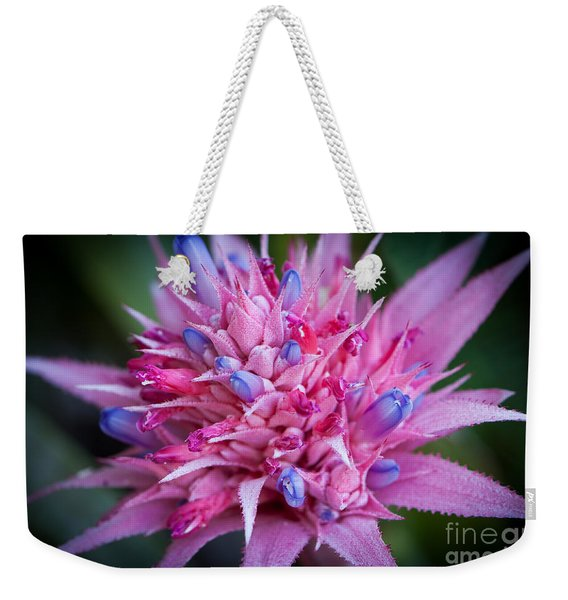 Weekender Tote Bag featuring the photograph Blooming Bromeliad by John Wadleigh