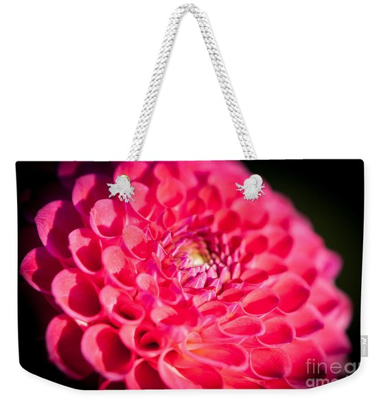 Weekender Tote Bag featuring the photograph Blooming Red Flower by John Wadleigh