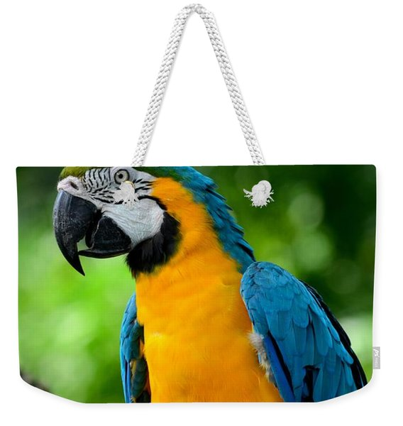 Blue And Yellow Gold Macaw Parrot Weekender Tote Bag