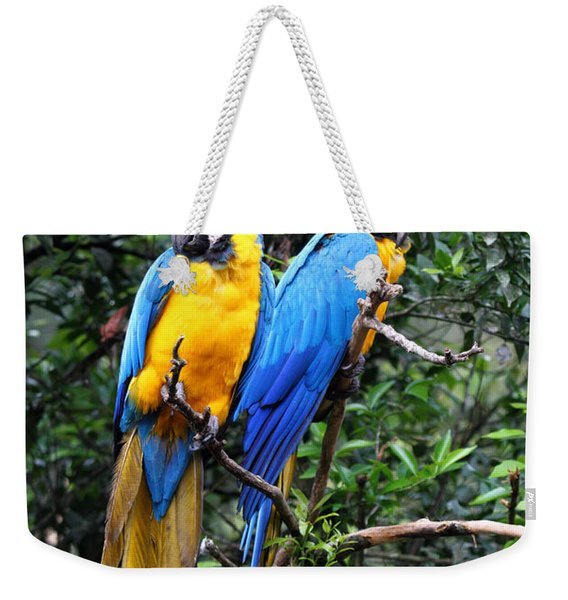 Blue And Yellow Macaws Weekender Tote Bag