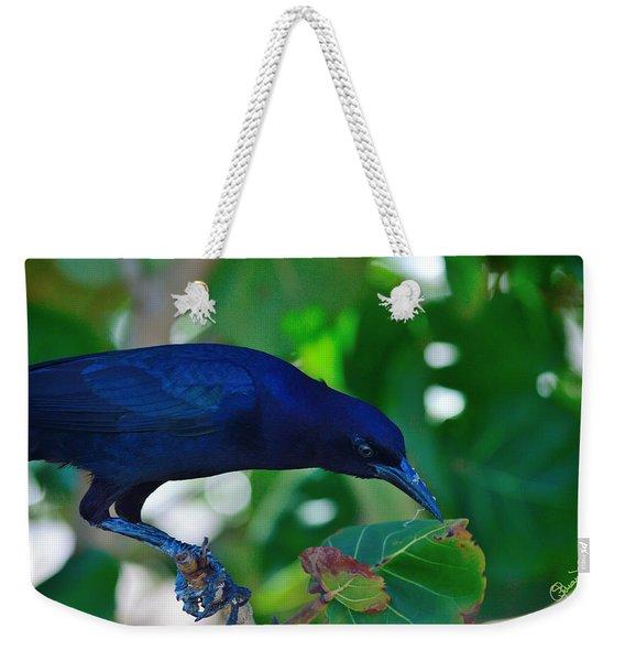 Blue-black Black Bird Weekender Tote Bag