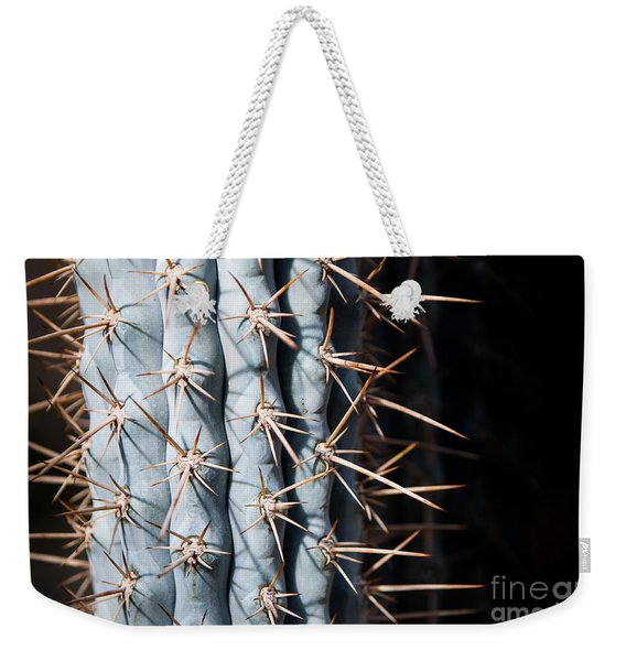 Weekender Tote Bag featuring the photograph Blue Cactus by John Wadleigh