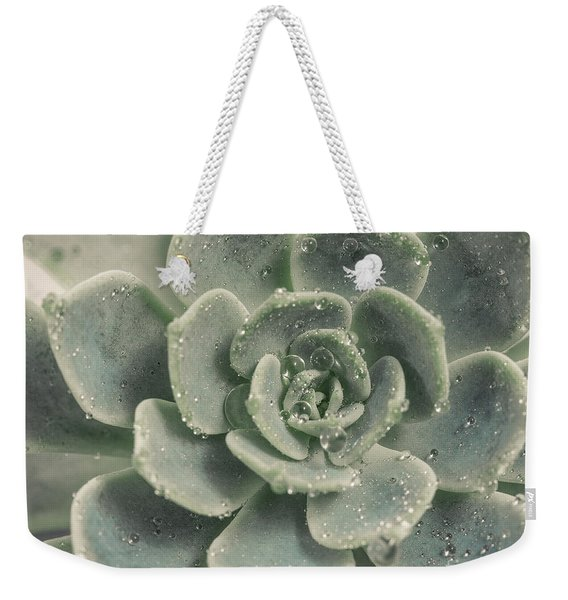 Blue Green Succulent 2 Weekender Tote Bag