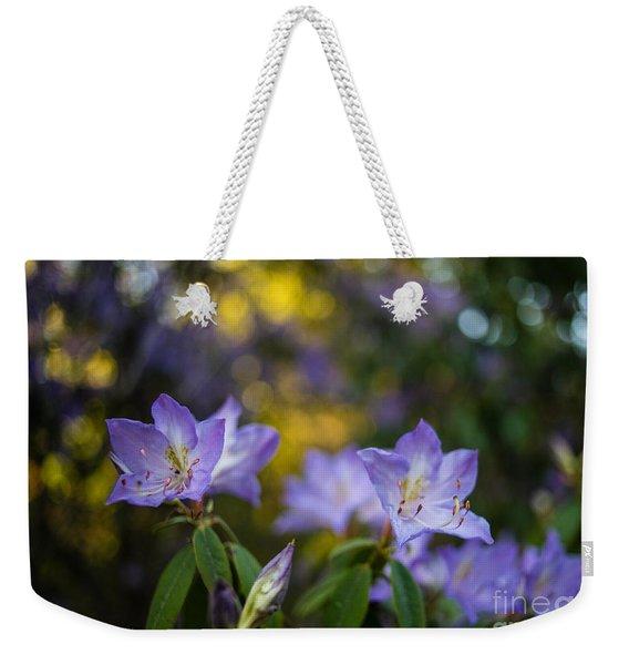 Blue Heavenly Weekender Tote Bag