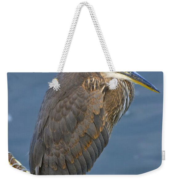 Weekender Tote Bag featuring the photograph Blue Herron by Jim Thompson