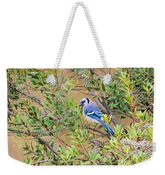 Blue Jay On Southern Wax Myrtle Weekender Tote Bag