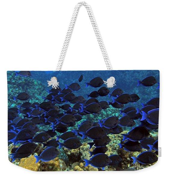Blue Tangs Weekender Tote Bag