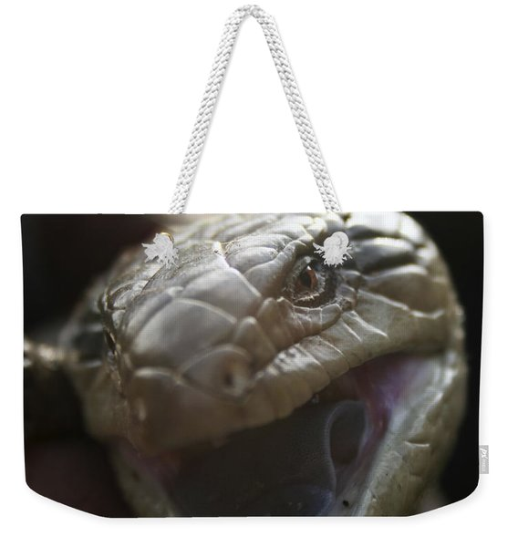 Blue Tongue Lizard Weekender Tote Bag