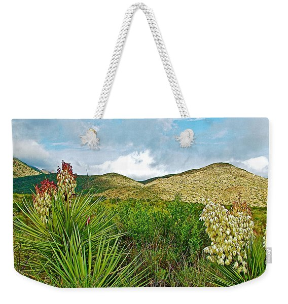 Blue Yucca And Chisos Mountains In Big Bend National Park-texas Weekender Tote Bag